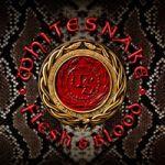 Whitesnake : Flesh & Blood CD/DVD