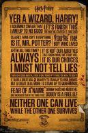 Harry Potter Quotes 61 x 91 cm Juliste