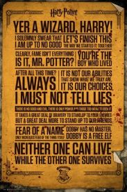 Harry Potter Quotes 61 x 91 cm Juliste