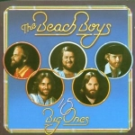 Beach Boys : 15 Big Ones CD