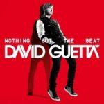 Guetta, David : Nothing but the beat 2-LP