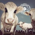 Steve n Seagulls : Grainsville LP
