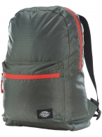 Dickies Carters Lake olive green Reppu