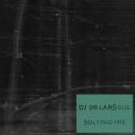 DJ Polarsoul : Solitudine LP