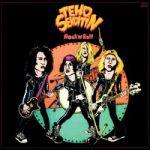 Tehosekoitin : Rock n roll 2-LP